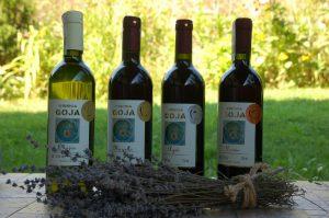 wina gronowe