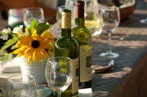 degustacja i zwiedzanie winnicy